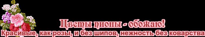 FPM41KHZukYl (700x126, 71Kb)