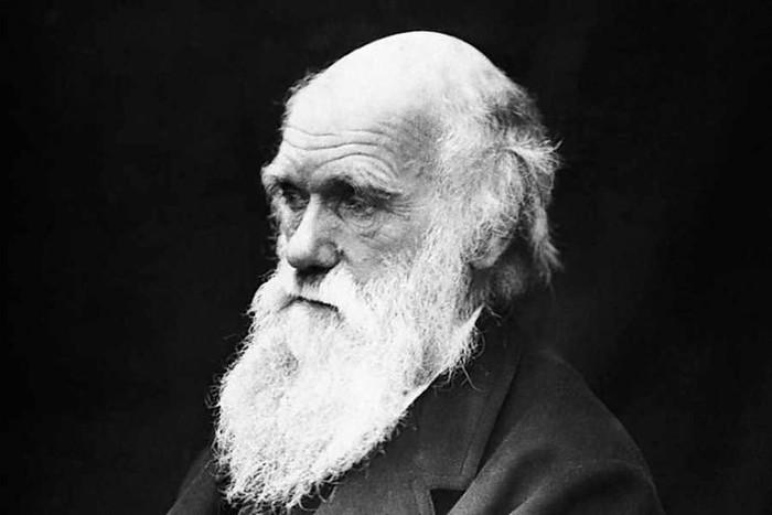 Как изменилась теория эволюции Чарльза Дарвина за 150 лет?