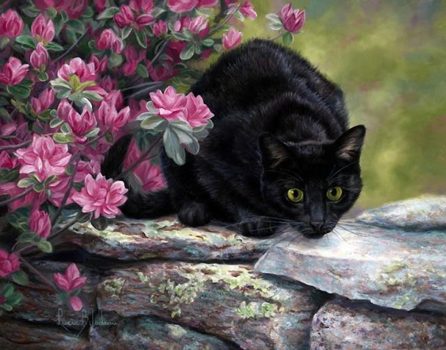 1390415830_lucie-bilodeau-cats-2 (640x502, 362Kb)