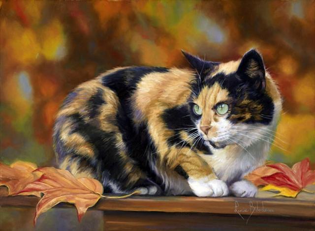 1390415874_lucie-bilodeau-cats-9 (640x470, 305Kb)