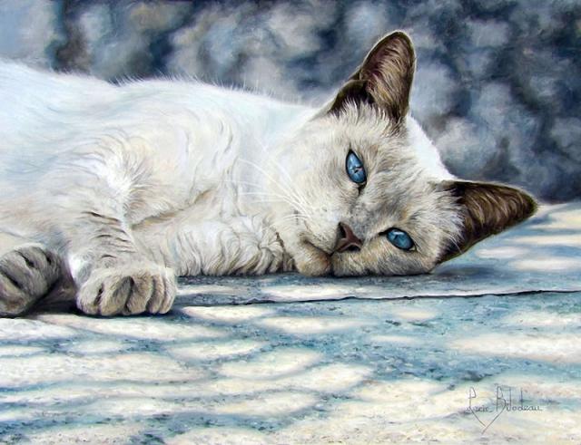 1390415964_lucie-bilodeau-cats-19 (640x491, 340Kb)