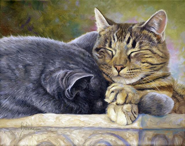 1390416001_lucie-bilodeau-cats-24 (640x508, 382Kb)