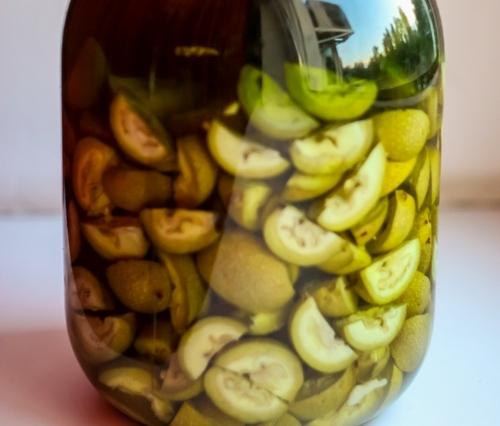 Настойка зеленого ореха при диабете