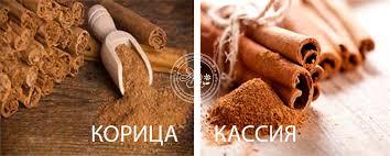 5239983_kassiya_korica (354x142, 11Kb)