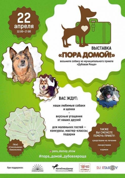 Priyut_Dubovaya_Roshcha/3483673_Priut_DR (494x700, 245Kb)
