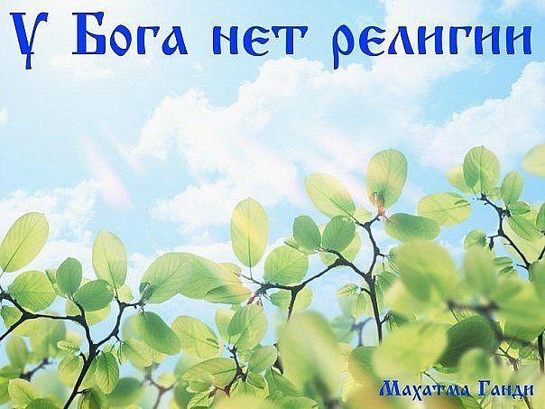 BokrwA0s8OM (604x453, 52Kb)