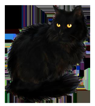 kitten_cat_6 (314x350, 132Kb)