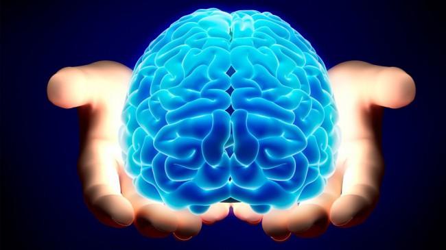 brain-650x365 (650x365, 189Kb)