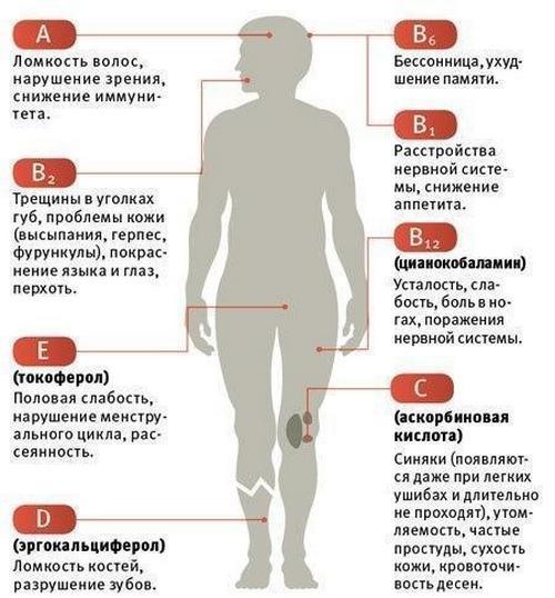 витамины (500x538, 158Kb)