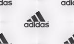 Превью adidas-beyy-fon-firma-sport (700x420, 70Kb)