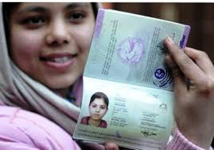 4878453_pasport_egipet (700x490, 37Kb)