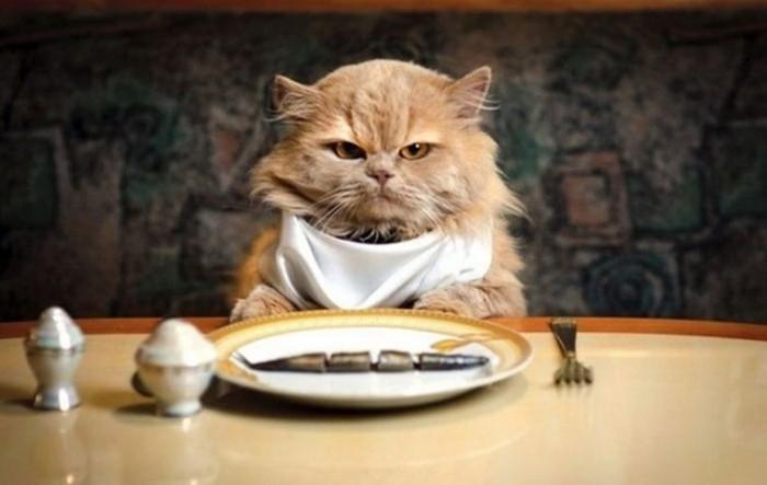 Правильно ли говорить «приятного аппетита»?