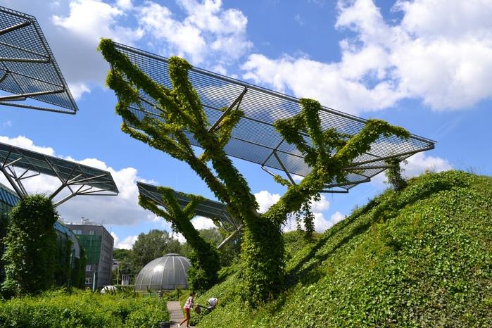 Сзи 6 получить Ботанический сад документы для кредита в москве Звездный бульвар