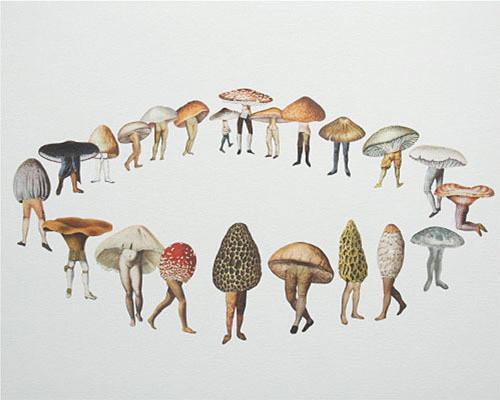 content_mushroomcaps (500x400, 111Kb)