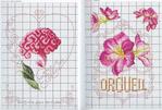 Превью Langage des Fleurs 4 (700x473, 347Kb)