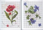 Превью Langage des Fleurs 10 (700x500, 338Kb)