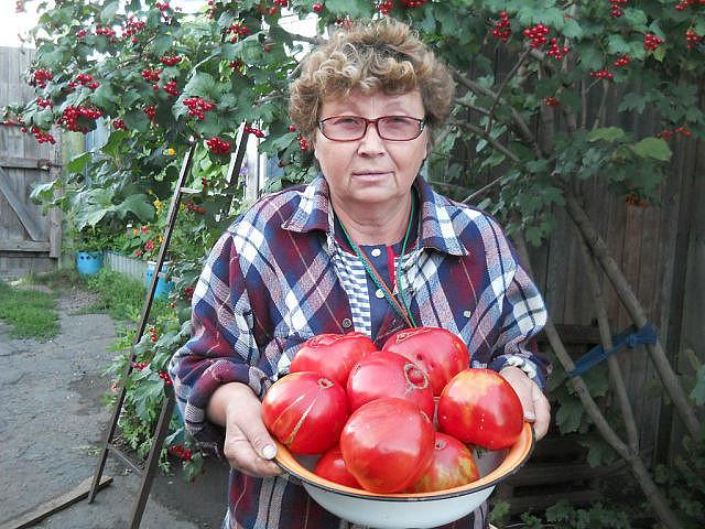 3925311_pomidornie_soveti (640x480, 122Kb)