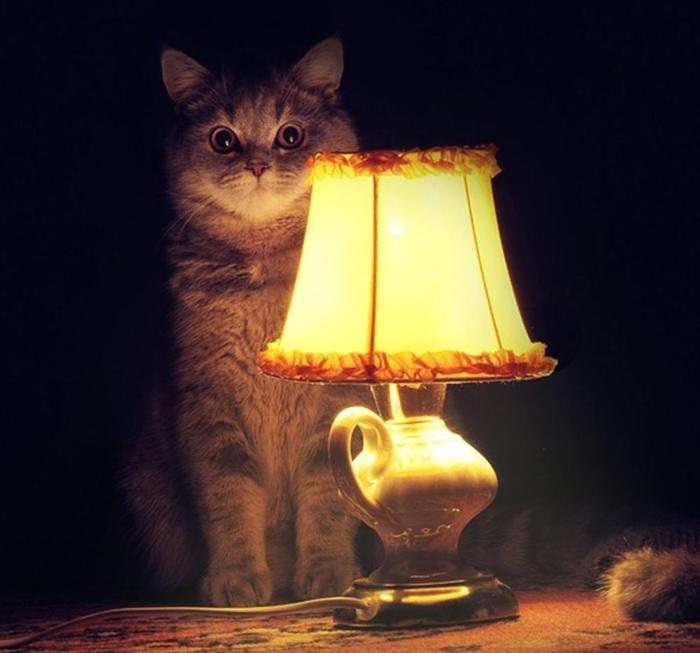 119383128_lamp (700x653, 39Kb)