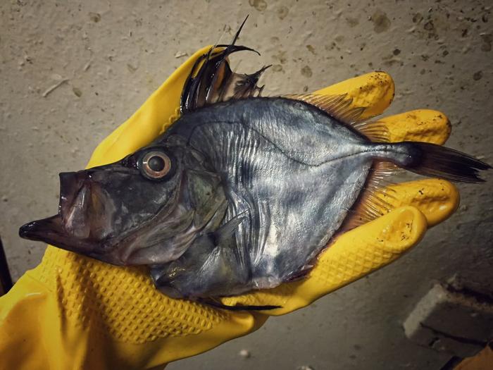 мурманск рыболовный туризм