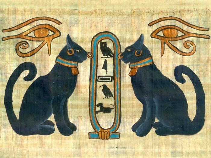 Все факты об удивительных кошках
