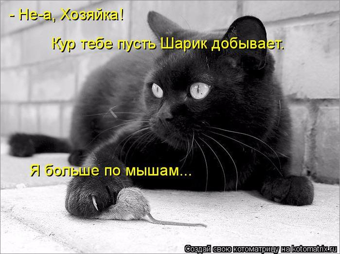 kotomatritsa_WA (700x522, 276Kb)