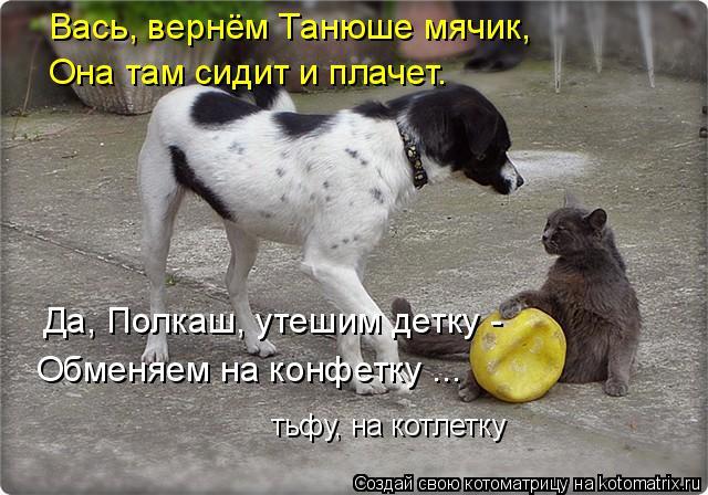 kotomatritsa_F (3) (640x448, 206Kb)