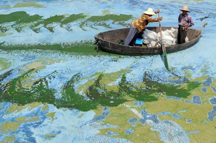 20 фото Китая, которые показывают страну не с лучшей стороны