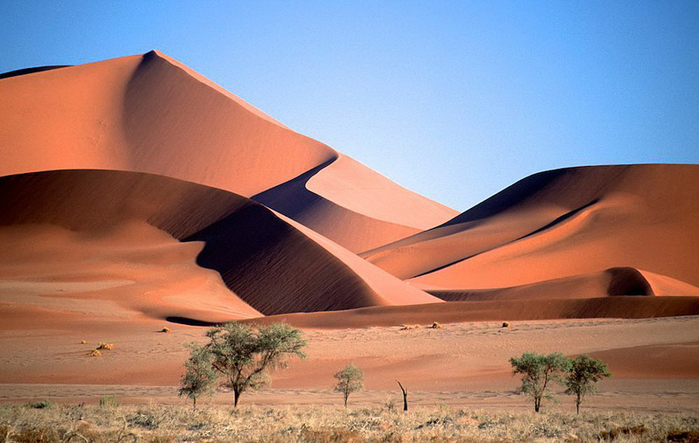 Namib_Naukluft_National_Park_029 (700x443, 254Kb)