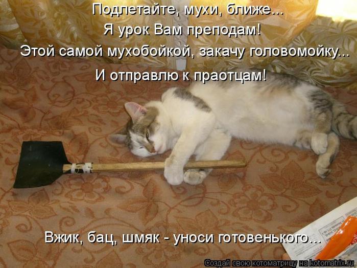 kotomatritsa_LR (700x524, 405Kb)