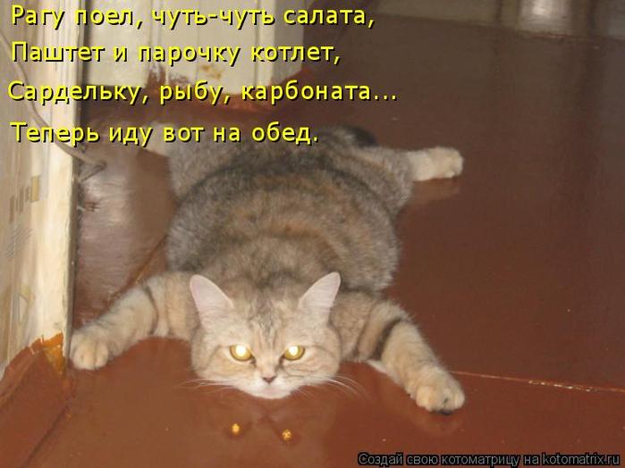 kotomatritsa_Ou (700x524, 305Kb)
