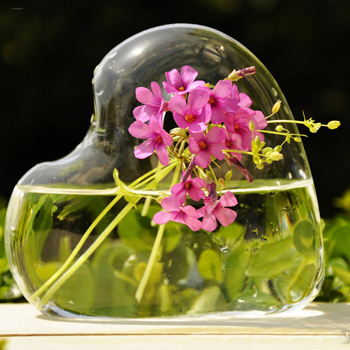 heart-glass-wall-hanging-vase-hydroponic-container-home-wedding-flower-decor-diy-75153-5981 (700x700, 188Kb)