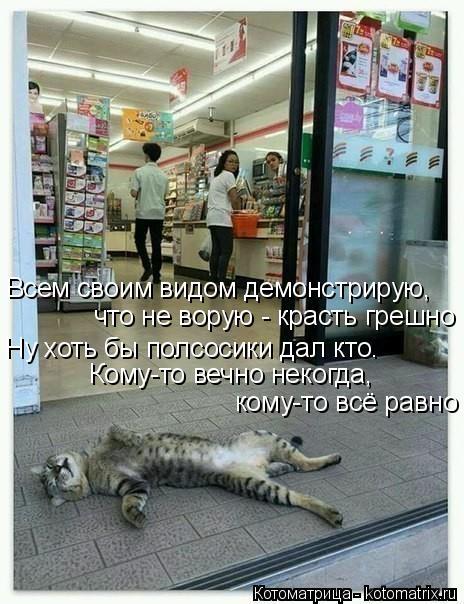 kotomatritsa_c (464x604, 209Kb)