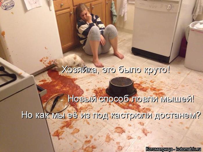 kotomatritsa_Fm (700x524, 359Kb)
