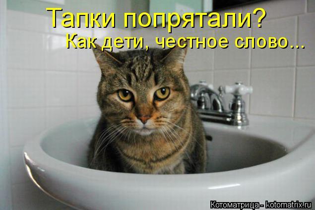 kotomatritsa_R (635x423, 159Kb)