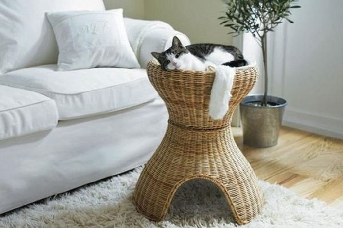 furniture-for-cats-19-1200x800 (700x466, 50Kb)
