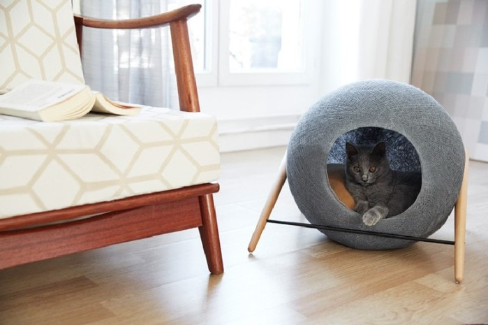 design-modern-cat-furniture-768x511 (700x465, 60Kb)