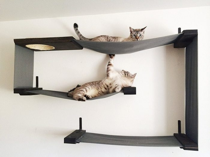 New-Cat-Tower-with-Hammock (700x525, 37Kb)