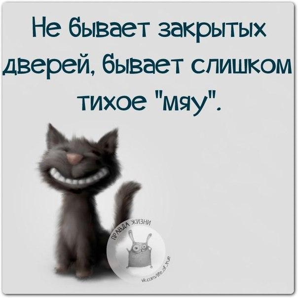 1422300057_frazki-13 (604x604, 120Kb)
