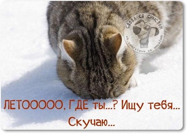 1422300120_frazki-25 (604x433, 171Kb)