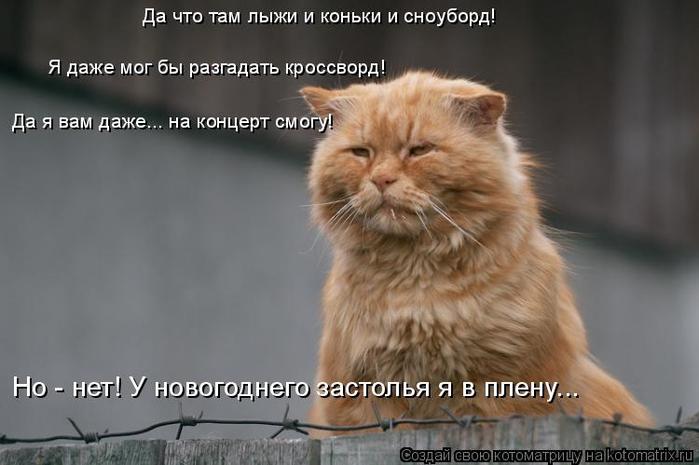 kotomatritsa_b (700x465, 217Kb)