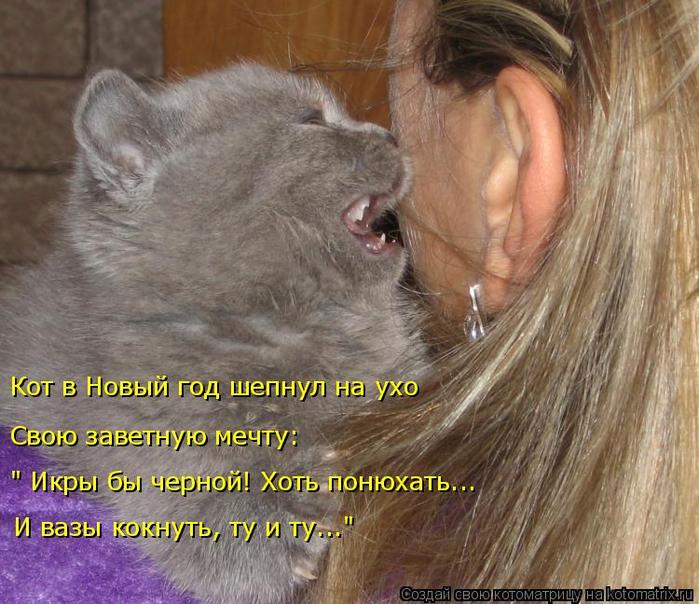 kotomatritsa_I (700x604, 436Kb)
