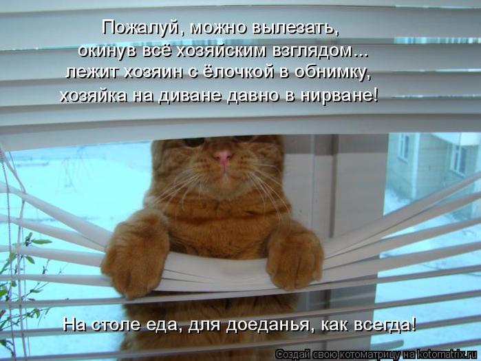kotomatritsa_n (700x524, 352Kb)