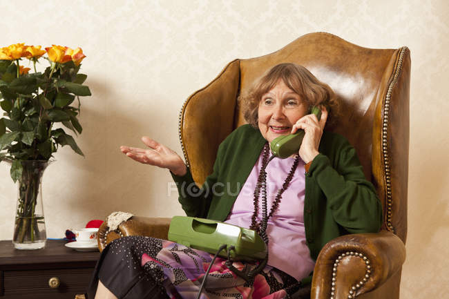 6325828_focused_178110576Seniorwomantalkingphoneliving (650x433, 43Kb)