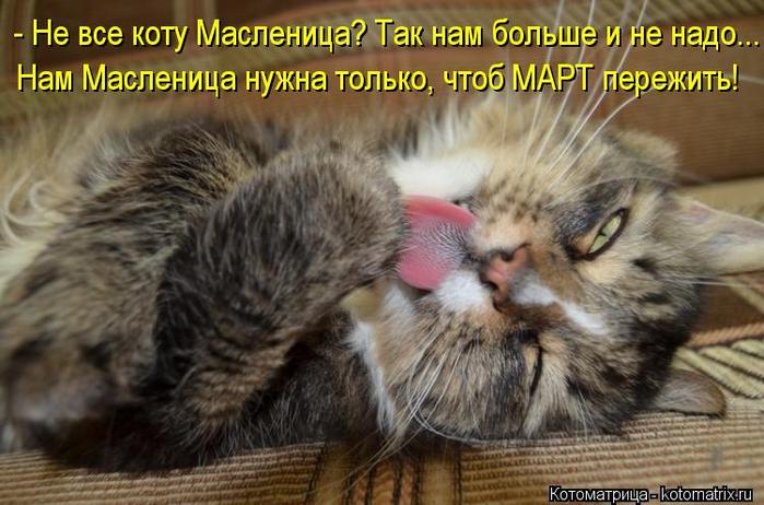 kotomatritsa_cx (1) (700x462, 347Kb)