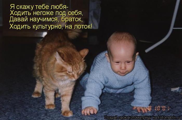 kotomatritsa_Ds (700x462, 273Kb)
