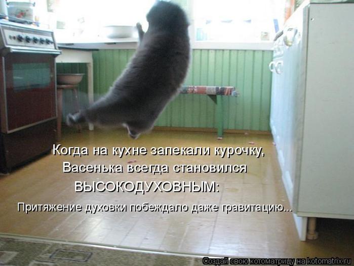 kotomatritsa_l (700x524, 305Kb)