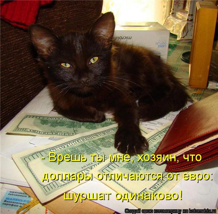 kotomatritsa_RH (700x688, 537Kb)