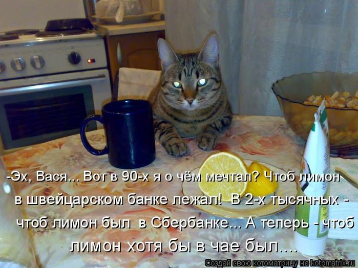 kotomatritsa_N (700x524, 416Kb)