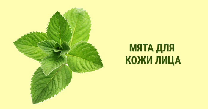 2749438_myata (700x367, 42Kb)