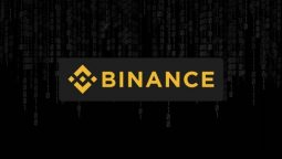 Binance-1-e1542824151146 (255x144, 5Kb)